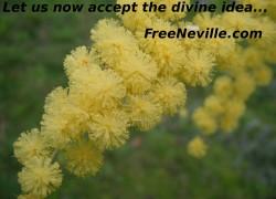 Free Neville Goddard - Divine Idea